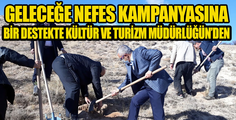 Kırşehir Müzesi'nin etrafı ağaçlandırıldı