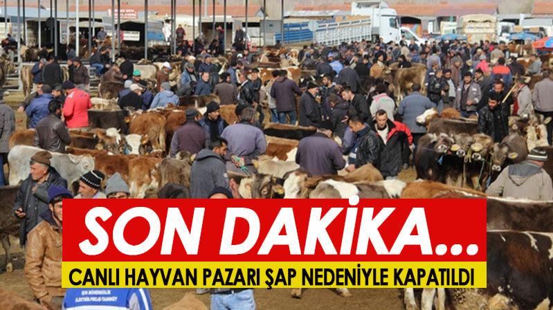Şap nedeniyle hayvan pazarı kapatıldı