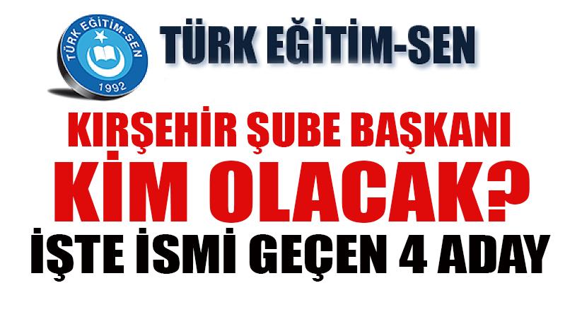 Türk Eğitim Sen Şube Başkanı kim olacak?