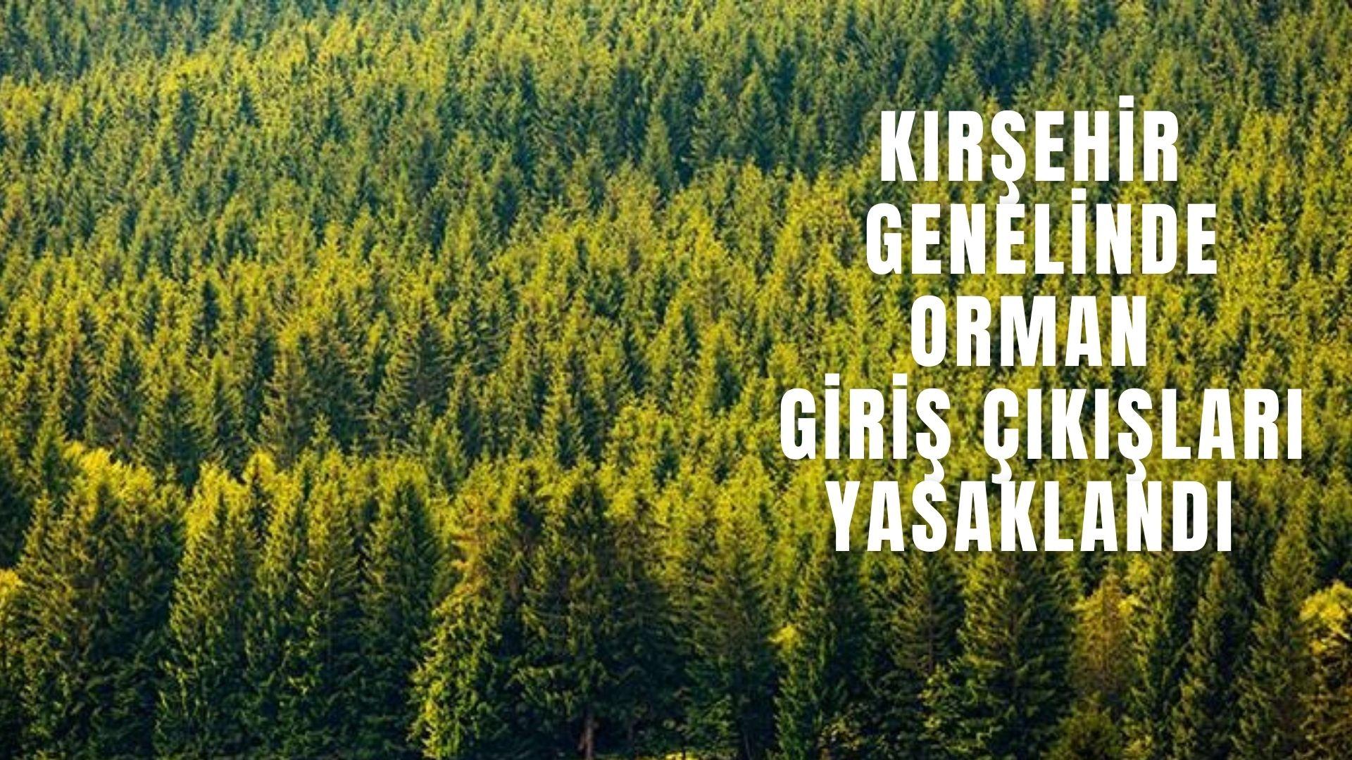 Kırşehir Geneli Ormanlara Giriş Çıkış yasaklandı