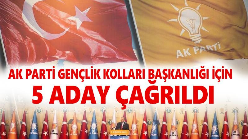 AK Parti Gençlik Kolları için mülakat yapıldı
